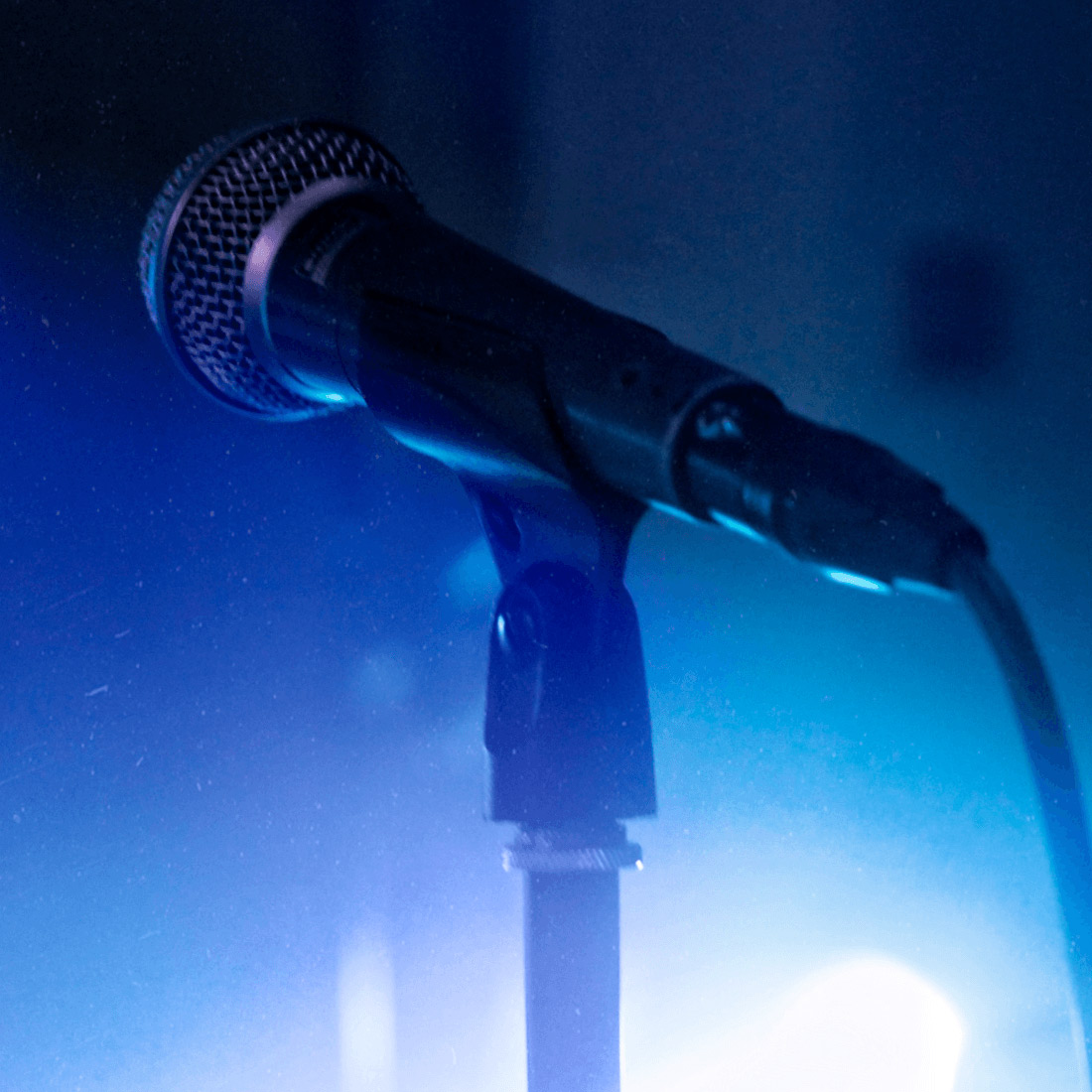 Livestream Festival